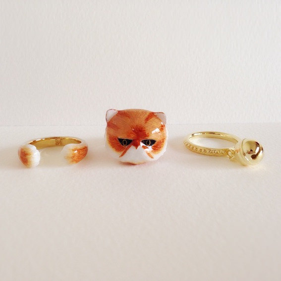 aneis-animais-2