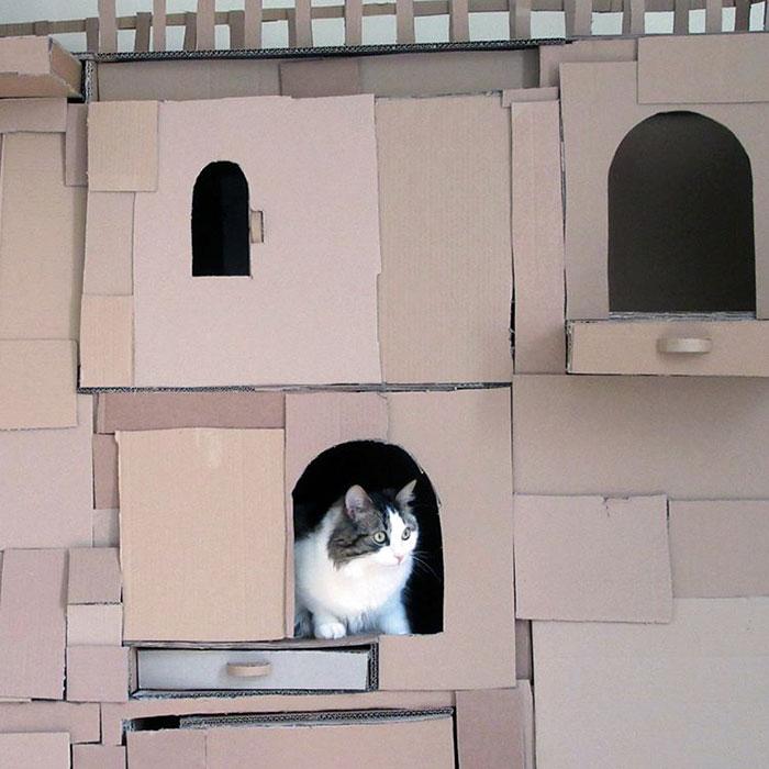 castelo-para-gatos-4