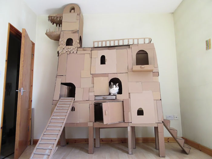 castelo-para-gatos-5