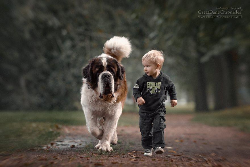 criancas-caes-grandes-47