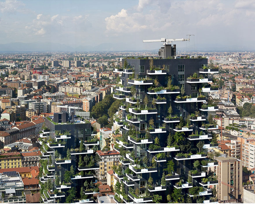florestas-verticais (6)