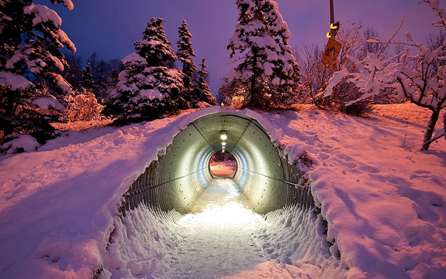 Túnel para animais embaixo de estrada na Finlândia