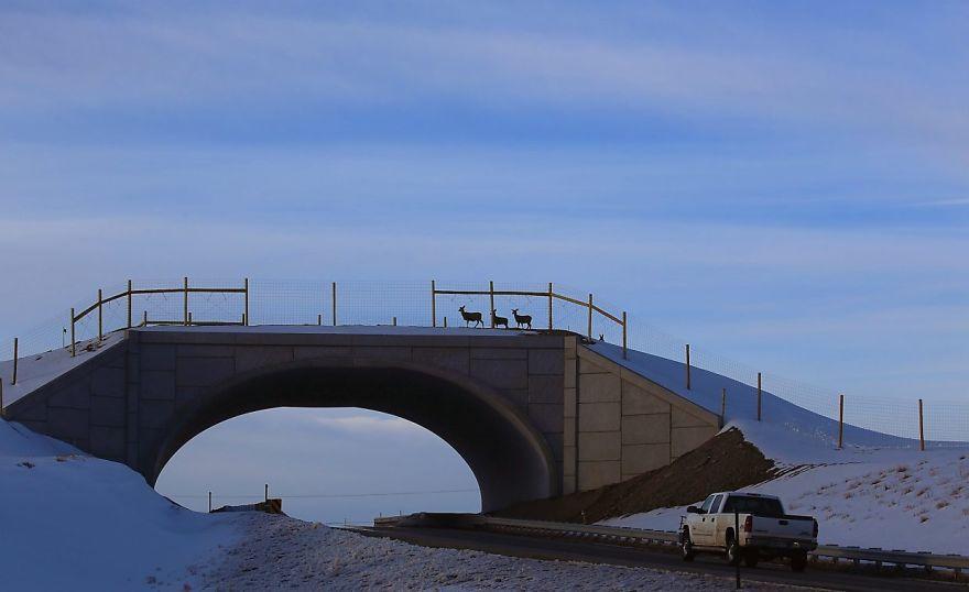 Ecoduto no Colorado
