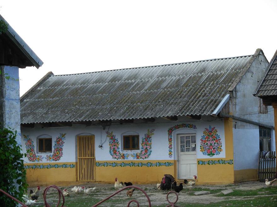 vila-polonesa-flores (40)