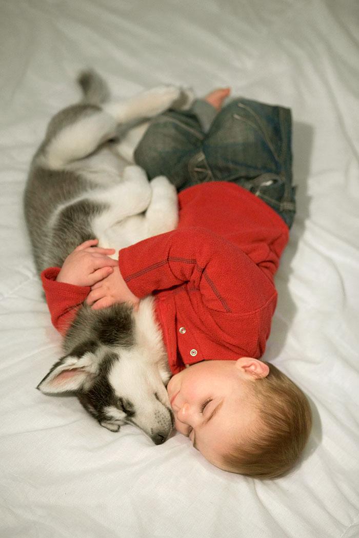 caes-criancas-dormindo (1)