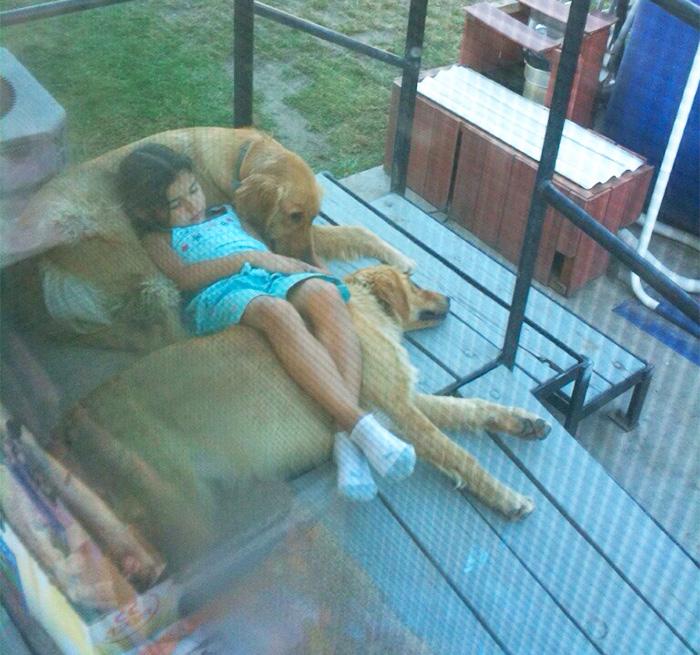 caes-criancas-dormindo (12)