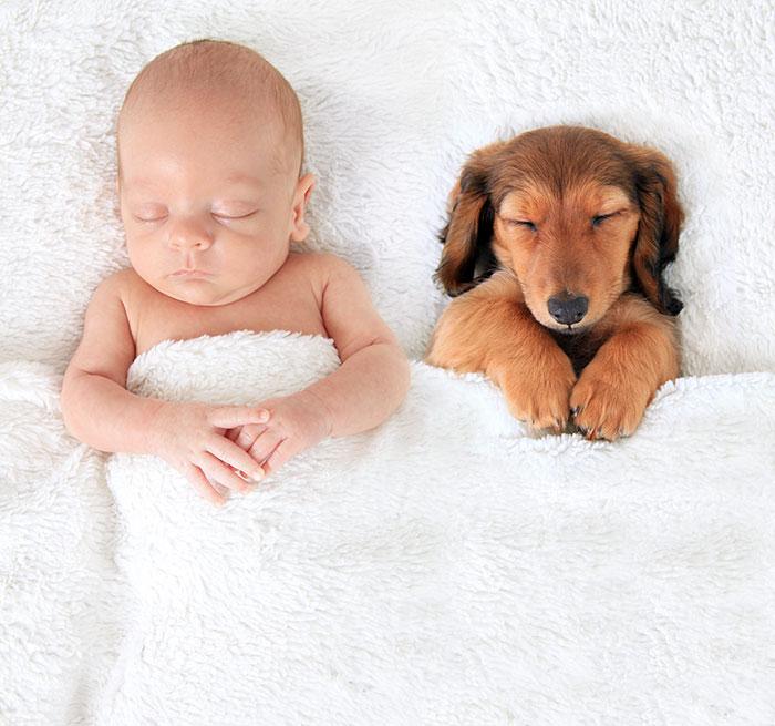 caes-criancas-dormindo (2)