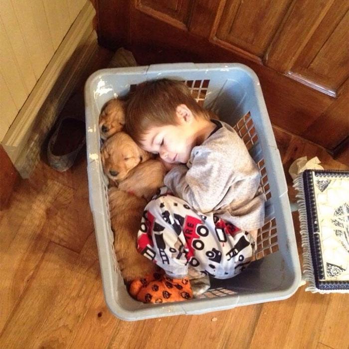 caes-criancas-dormindo (22)