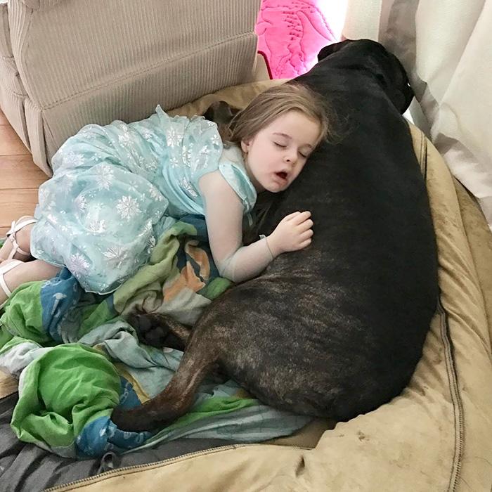 caes-criancas-dormindo (25)