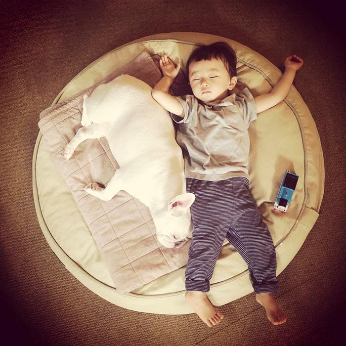 caes-criancas-dormindo (34)