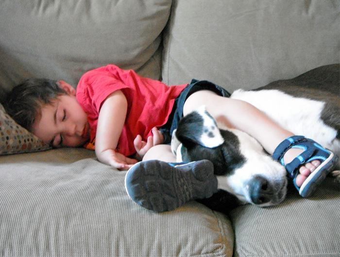 caes-criancas-dormindo (36)