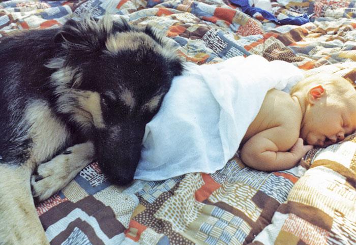 caes-criancas-dormindo (37)