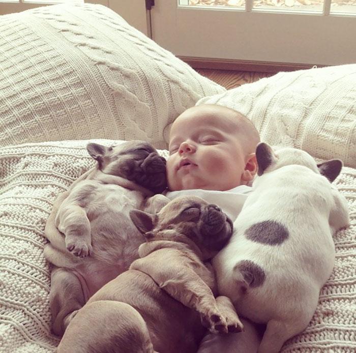 caes-criancas-dormindo (4)