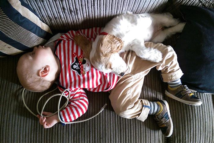 caes-criancas-dormindo (44)