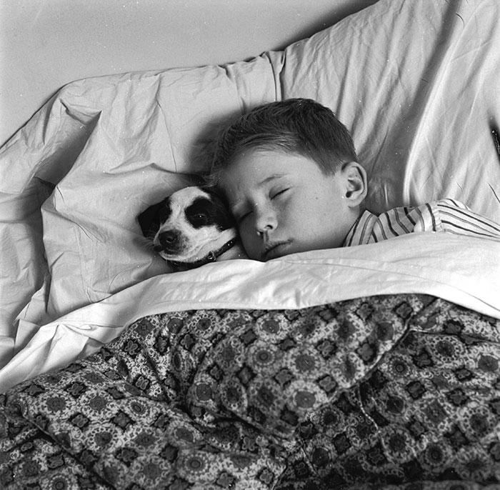 caes-criancas-dormindo (50)