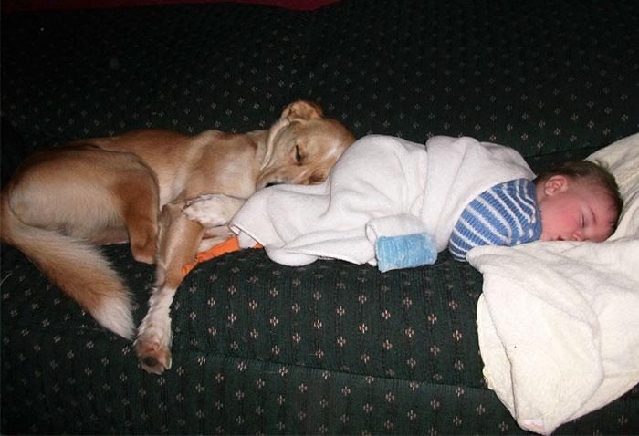 caes-criancas-dormindo (51)