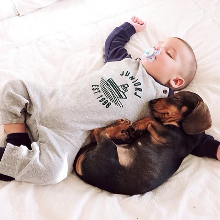 caes-criancas-dormindo (54)