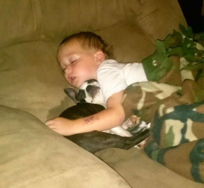 caes-criancas-dormindo (58)