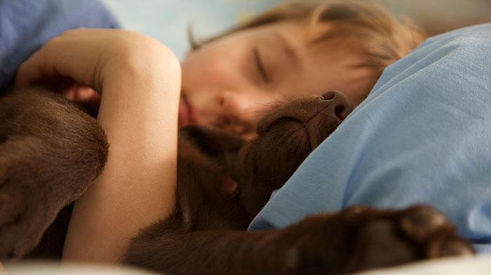 caes-criancas-dormindo (59)