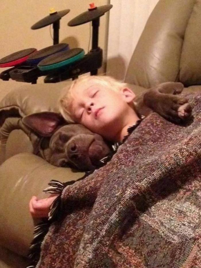 caes-criancas-dormindo (62)
