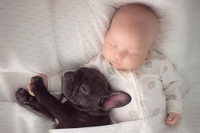 caes-criancas-dormindo (7)
