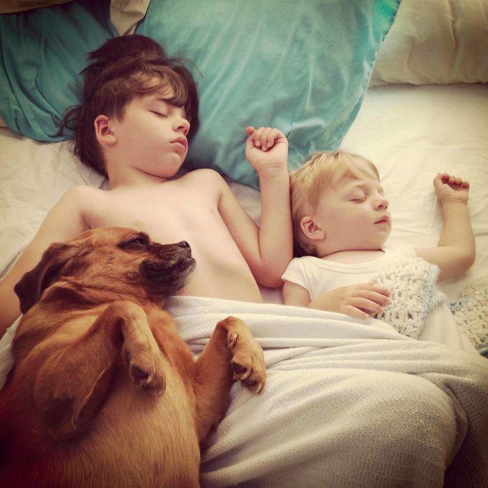 caes-criancas-dormindo (8)