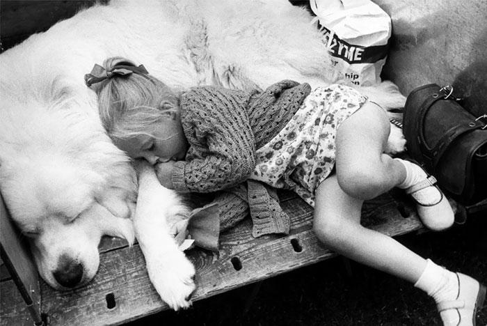caes-criancas-dormindo (9)