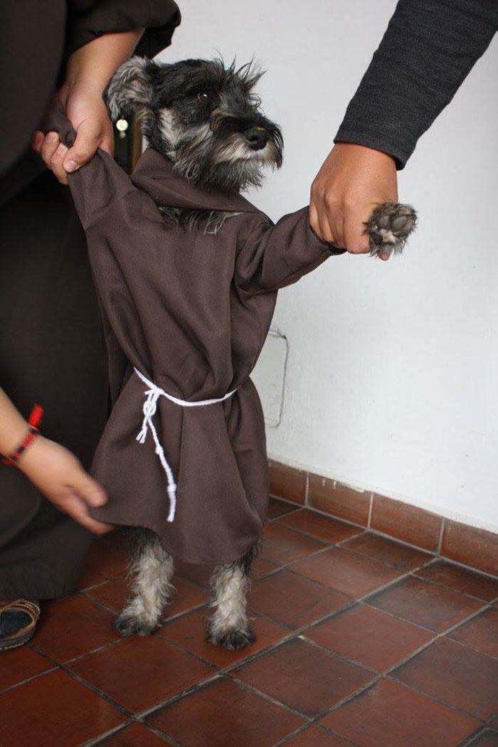 cao-monge (9)