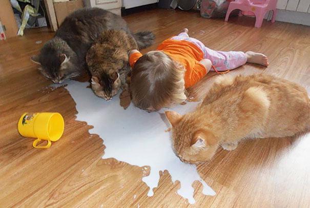 animais-vs-criancas (1)