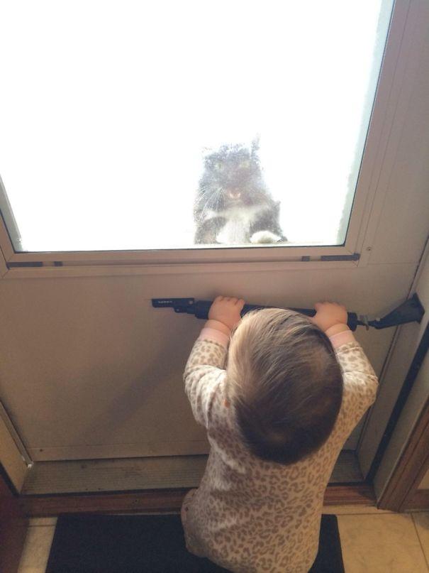 animais-vs-criancas (18)