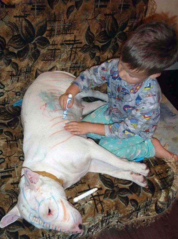 animais-vs-criancas (23)
