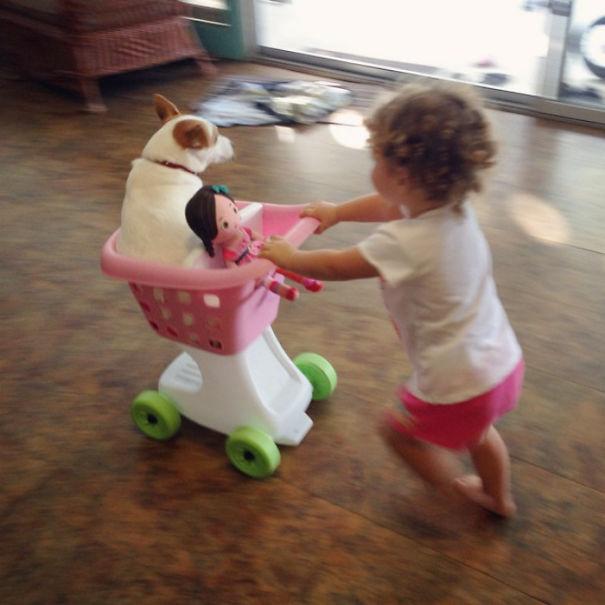 animais-vs-criancas (35)