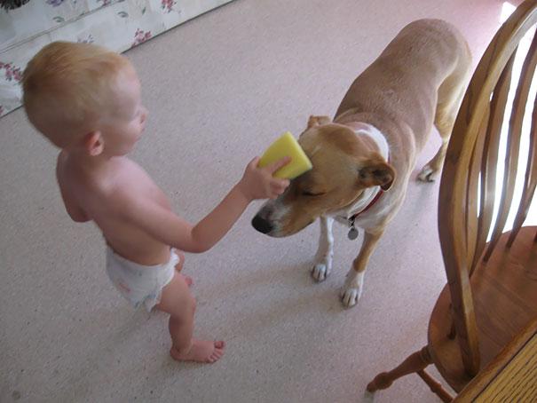 animais-vs-criancas (46)