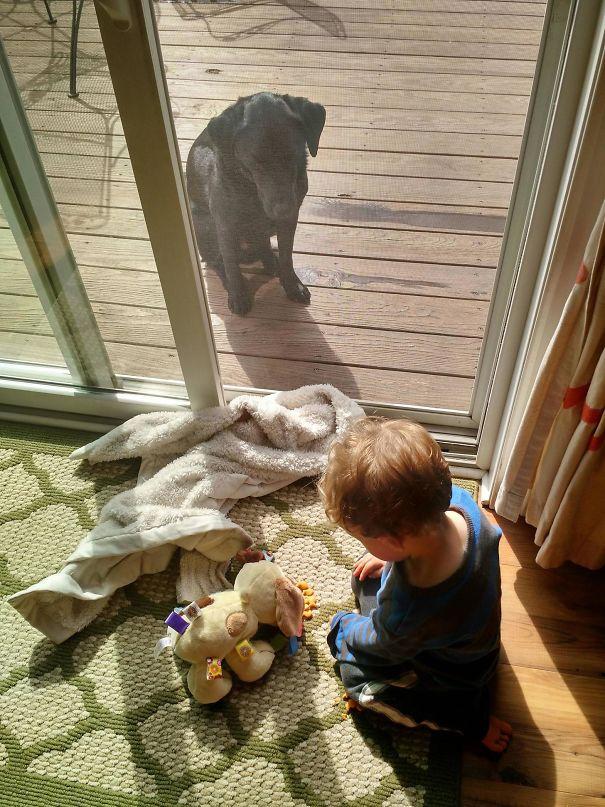 animais-vs-criancas (8)
