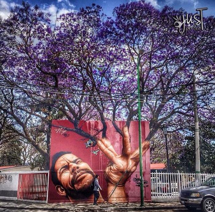 arte-de-rua-com-natureza (13)