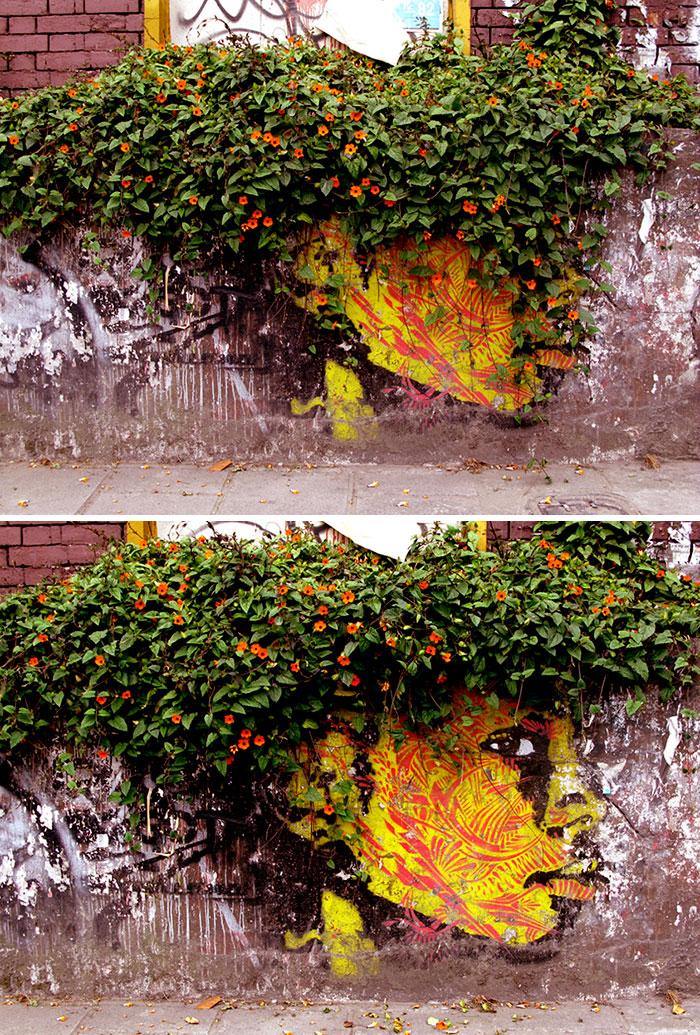 arte-de-rua-com-natureza (27)