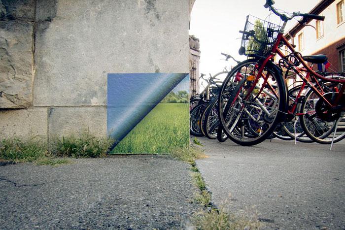 arte-de-rua-com-natureza (47)