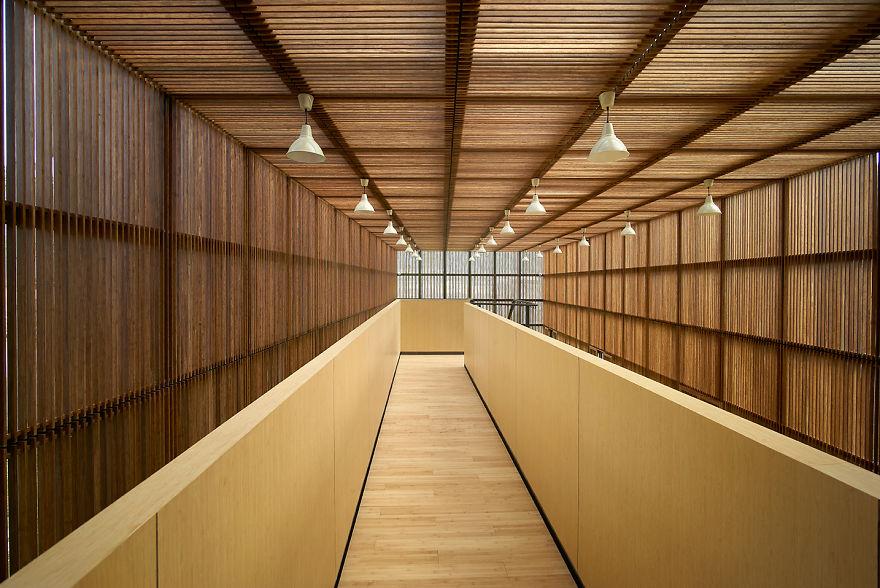 arquitetura-bambu (11)