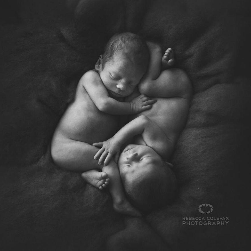 retratos-de-bebes (5)