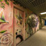 grafite-escola (6)