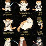 gatos-em-personagens-geeks (3)
