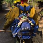 baby-yoda-bombeiros-eua (3)