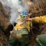 baby-yoda-bombeiros-eua (9)